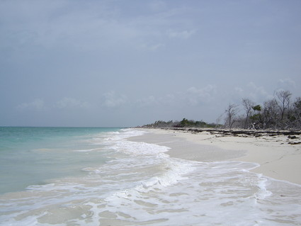 Isla Blanca: Looking north