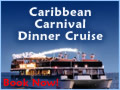 Caribbean Carnival Night Cruise